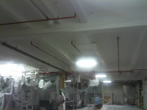 Food Plant Manufacturing Plant Painting